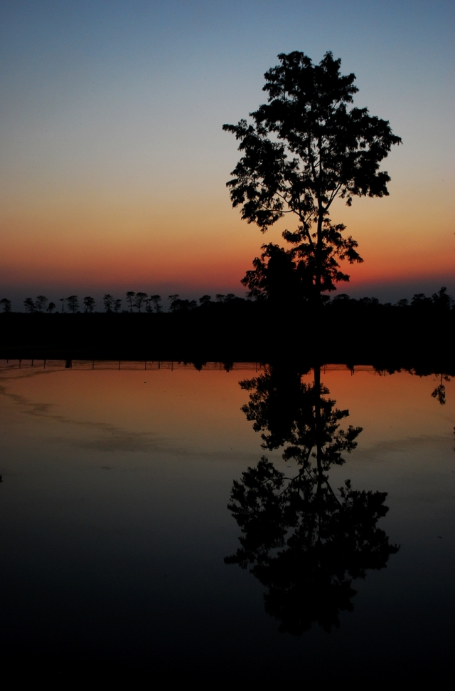 This photo was taken at Majuli Island, Assam. A magical land, where time is of no relevance, and hours seem small. Here, the setting sun talks about the coming darkness and silence of the night; of beautiful dreams and long nights.