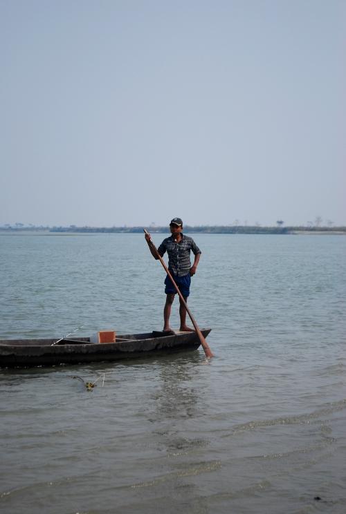 assam brahmaputa river