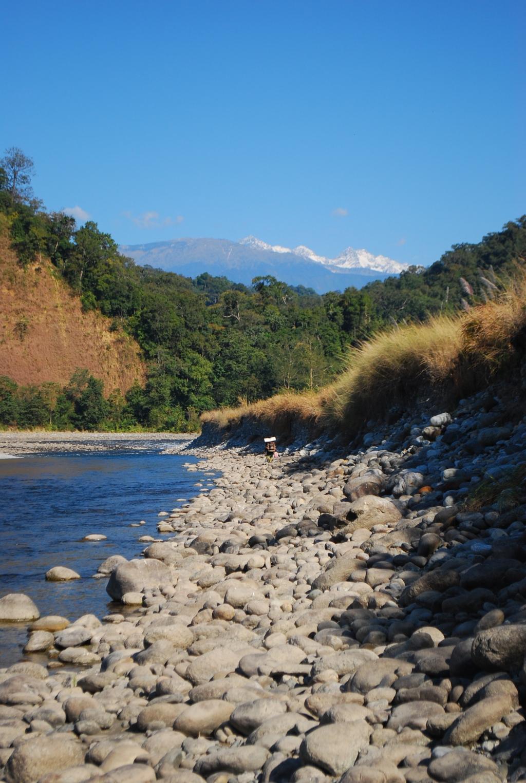 Namdapha National Park arunachal pradesh india northeast india forest wildlife wilderness
