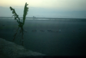 Photo Of The Day ~ Evenings AtMajuli