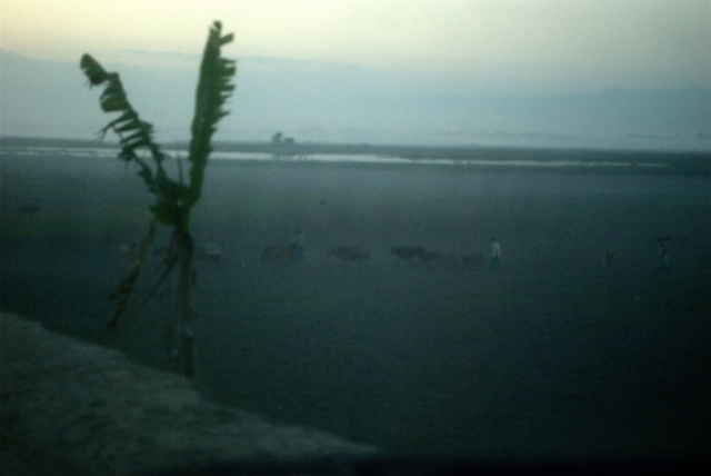 majuli island evening assam mist