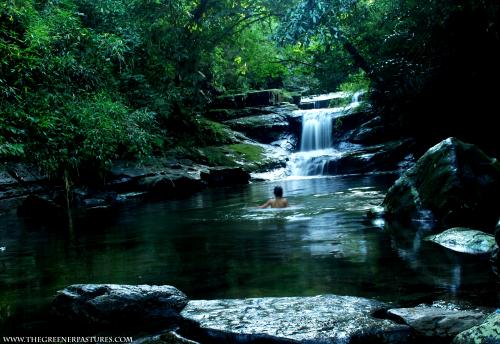 A swim in a little stream in Meghalaya