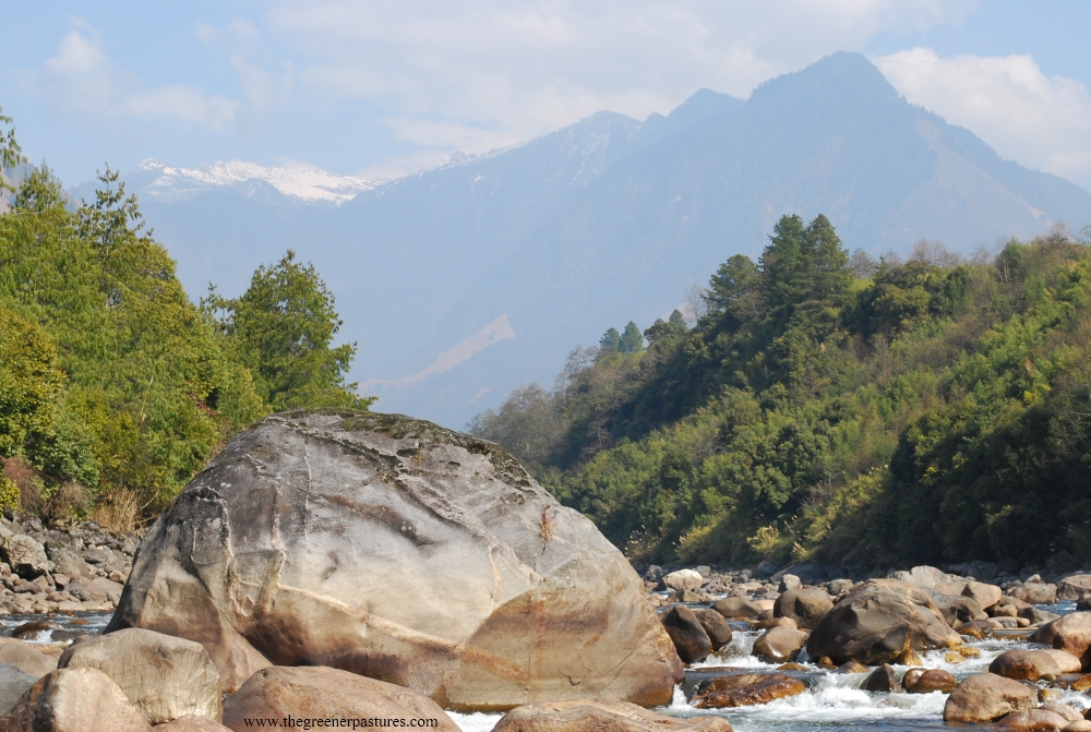 Landscape around Anini in Arunachal Pradesh