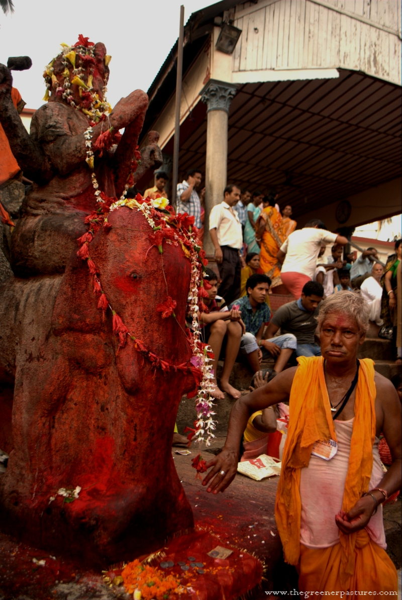 ganesha at kamakhya temple during ambubashi mela in guwahati