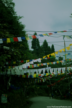 Photo Of Day – Prayers And Flags