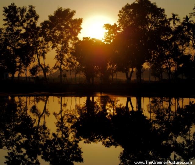 sunset at Majuli Island in Assam