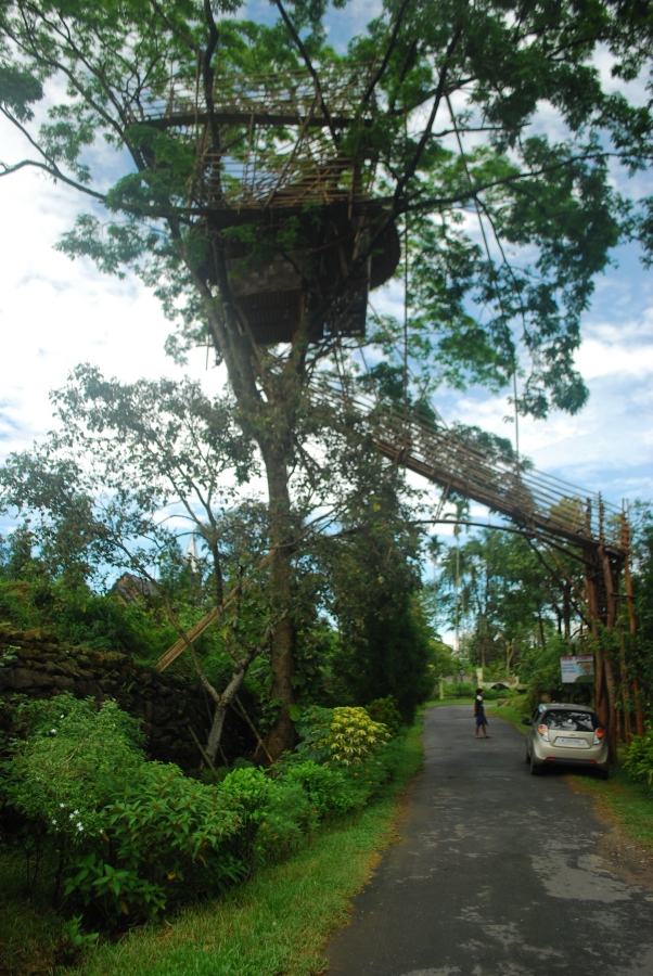 Tree house in Mawlynnong