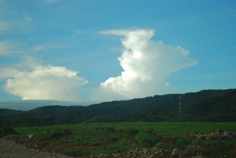 Crossing grasslands of pasture.