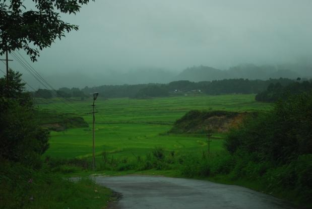 Central Arunachal Pradesh Ziro Apatani Tribe12