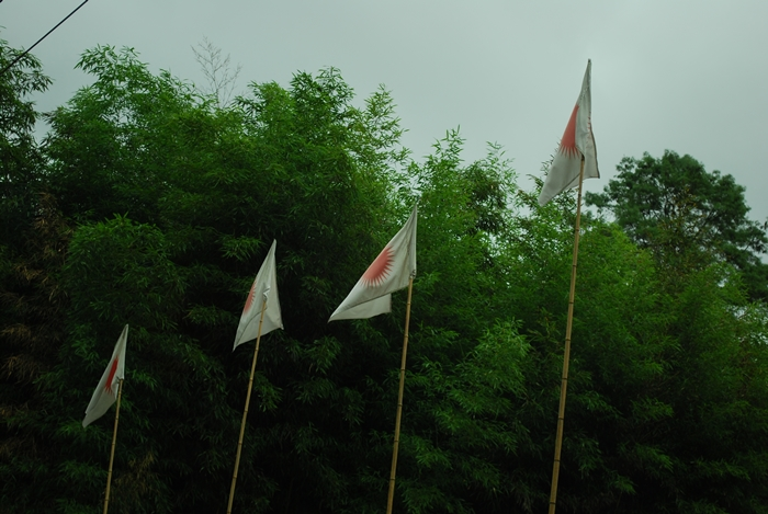 Donyi-Polo flags soar high