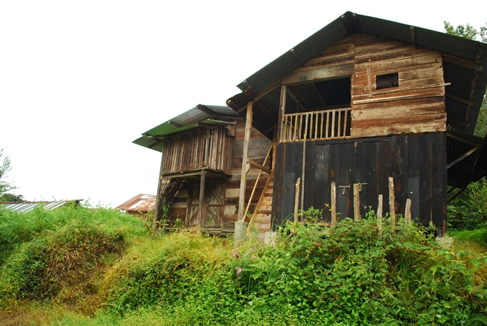 Typical house of Apatani Tribe