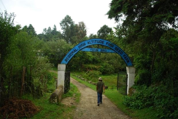 Central Arunachal Pradesh Ziro Apatani Tribe29