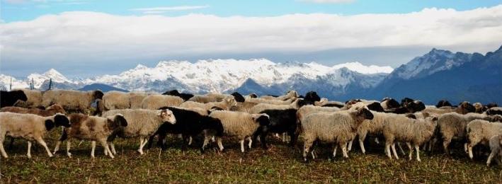 Gorichen Peaks