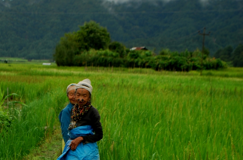 Two Apatani elders working in the fields.