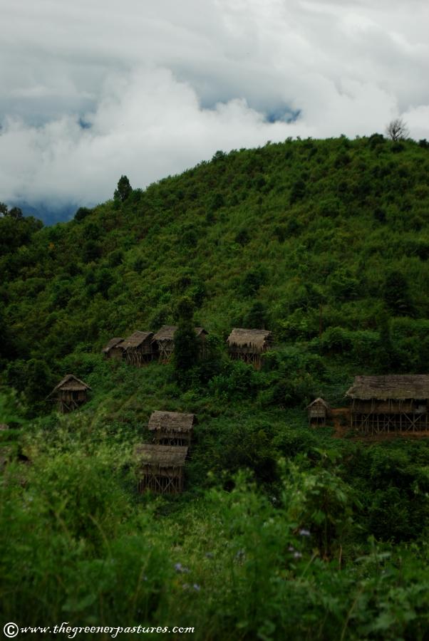 Arunachal Pradesh Village Landscape