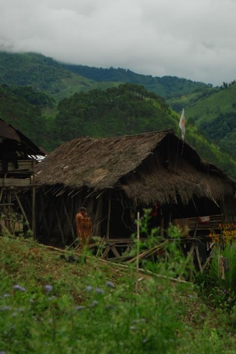 Donyi-Polo house