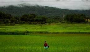The Apatani Tribe of Arunachal Pradesh – SustainableSimplicity