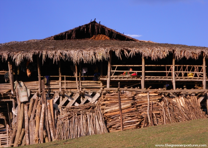 Sustainable-Living-Arunachal-Pradesh-Siang-River