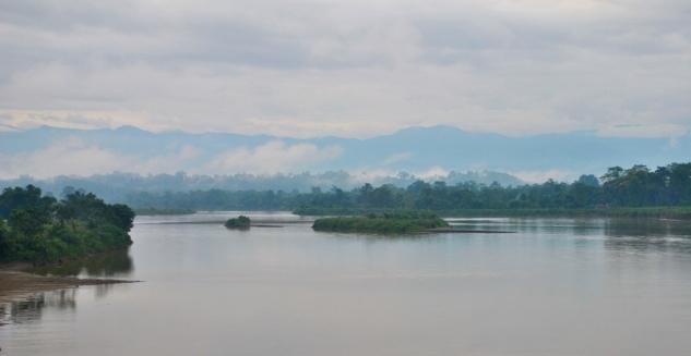 Dihing Patkai Wildlife Sanctaury, Tipam Village, Assam