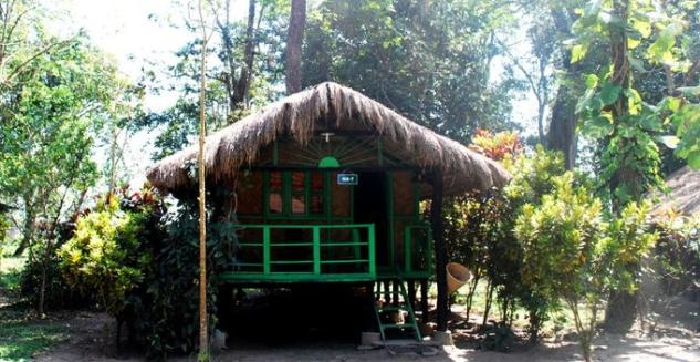 Potasali Eco Camp, Nameri National Park