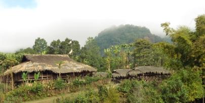 Adi Tribe Village, Siang Valley, Arunachal Pradesh