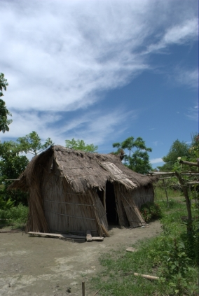 Human-Animal Conflict, House destroyed by elephant, Assam.