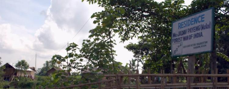 Jadav Payeng Residence, Assam