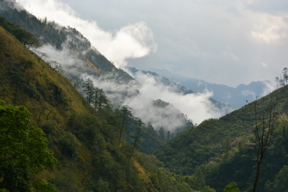 Ghallum Valley in Lohit District, Arunachal Pradesh