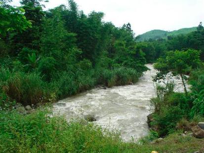 Patkai Hills, Arunachal Pradesh
