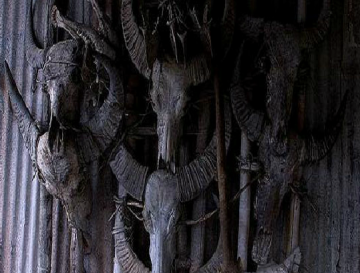 Animal skulls decoration in Nocte temple, Tirap District, Arunachal Pradesh