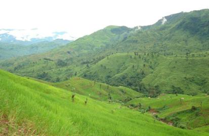 Slash and burn agriculture, Nocte Tribe, Arunachal Pradesh