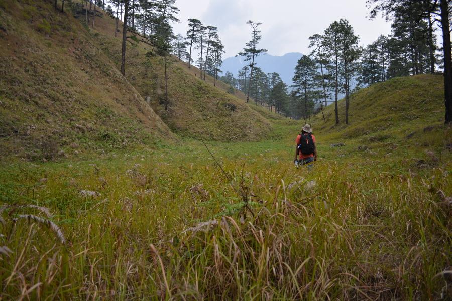 Hiking in the Lohit Valley of Arunachal Pradesh, Exploring Northeast India