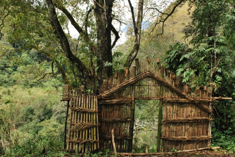Animist Village Gate, Mishmi Tribe, Lohit Valley, Arunachal Pradesh