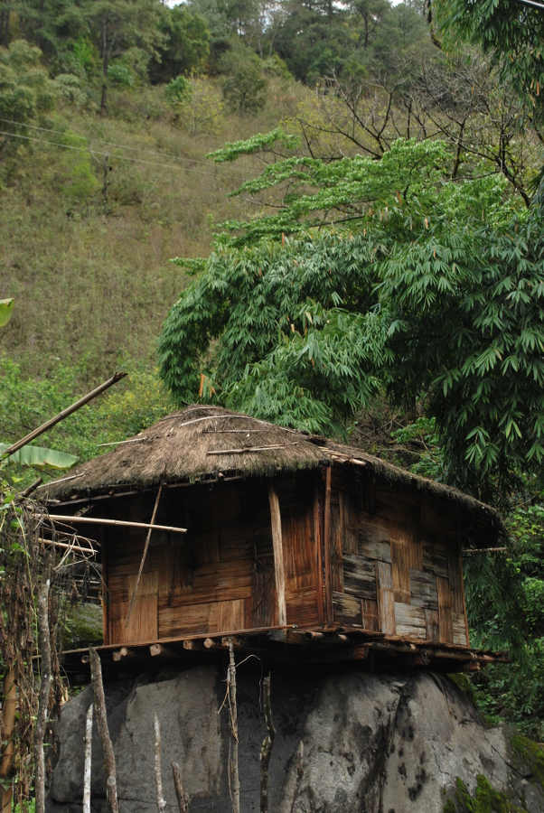 Mishmi Tribal House on top of a Rock, Lohit Valley Trek, Arunachal Pradesh